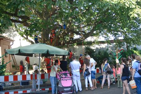 Kletterausrüstung Baumpflege : Brezelfest 2015 ks baumpflege mainz baumfällung